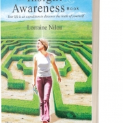 Your Insight & Awareness Book